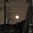 月がきれいですねの記事より