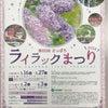 草根木花 ~ライラック~の画像
