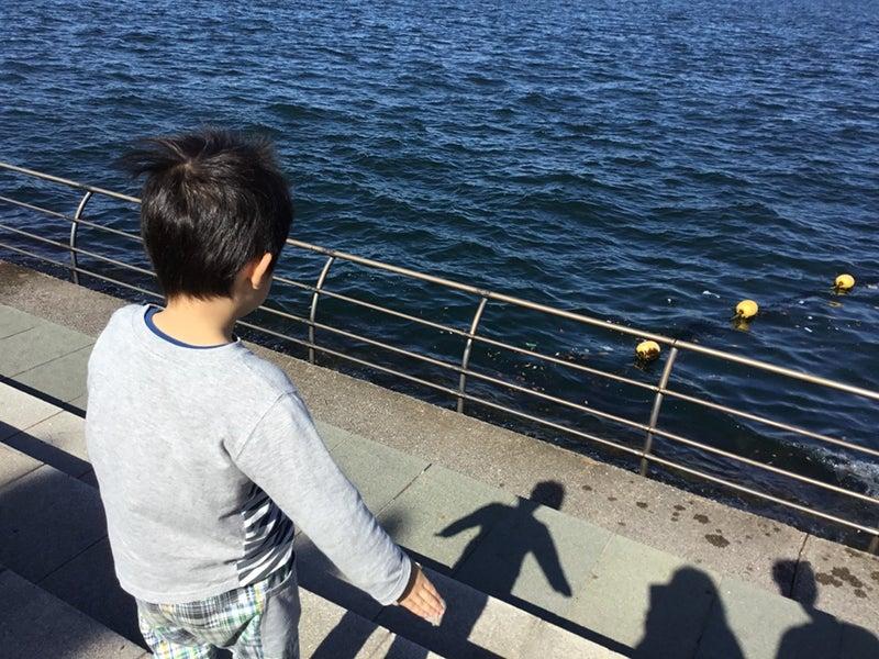 o0960072014291271648 - ♪10/21(日)♪toiro 戸塚