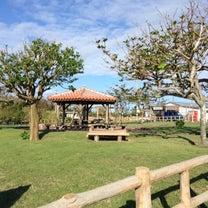 初めての久高島、 やさしい島の記事に添付されている画像
