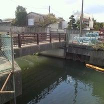 2018/10/28 江戸川釣行の記事に添付されている画像