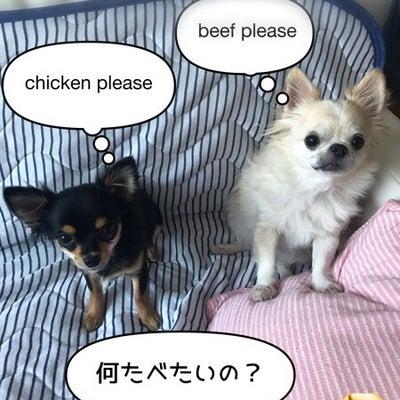 ご飯支度してもらうの記事に添付されている画像