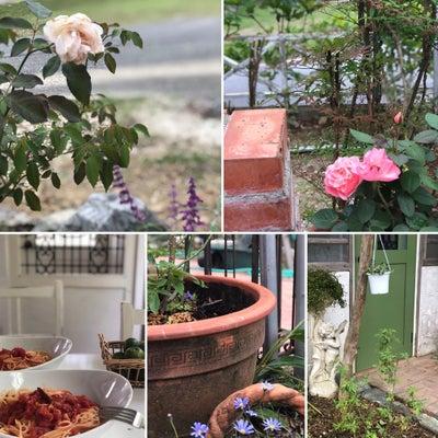 庭作業と塩麹アラビアータの記事に添付されている画像