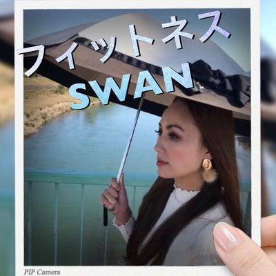 スワン高槻 専属モデルの記事に添付されている画像
