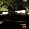京都 青蓮院ライトアップの画像