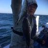 30日の釣果の画像
