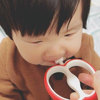 歯ブラシデビューの記事に添付されている画像