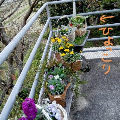 本野収穫祭 S'panier 寄せ植えの花かご 先行発表の記事に添付されている画像