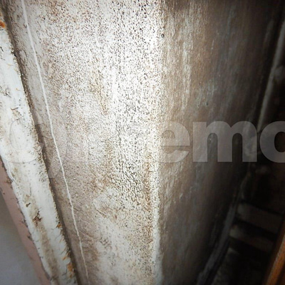 築30年以上のマンション玄関ドア脇塗装壁のカビの記事に添付されている画像