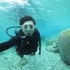 青の洞窟は中止になりましたが、サンゴビーチで体験ダイビング楽しんでいただきました♪の画像