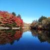 軽井沢の紅葉の画像