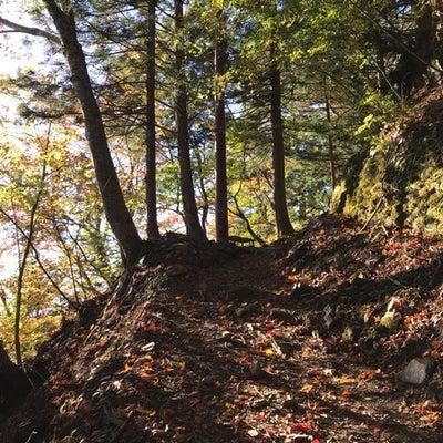 秋の七面山の記事に添付されている画像
