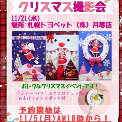 【おひるねアート】11月21日クリスマスアート撮影会 開催いたします。の記事に添付されている画像