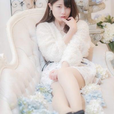 ビューティーホワイト・白乃ぱんちゃん15『モコモコ・プチフール1・速報』の記事に添付されている画像