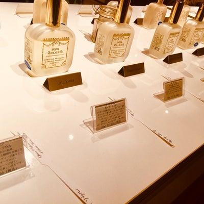 サンタ・マリア・ノヴェッラの香りの記事に添付されている画像