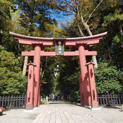 弥彦神社~火の鳥 宝徳山稲荷大社~三峯神社の旅❗その②の記事に添付されている画像