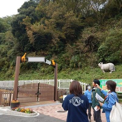 動物園が取り組む生物多様性についてアドバイスしてきました。の記事に添付されている画像