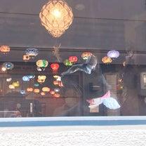 保護猫カフェ ウリエルに行ってきましたの記事に添付されている画像