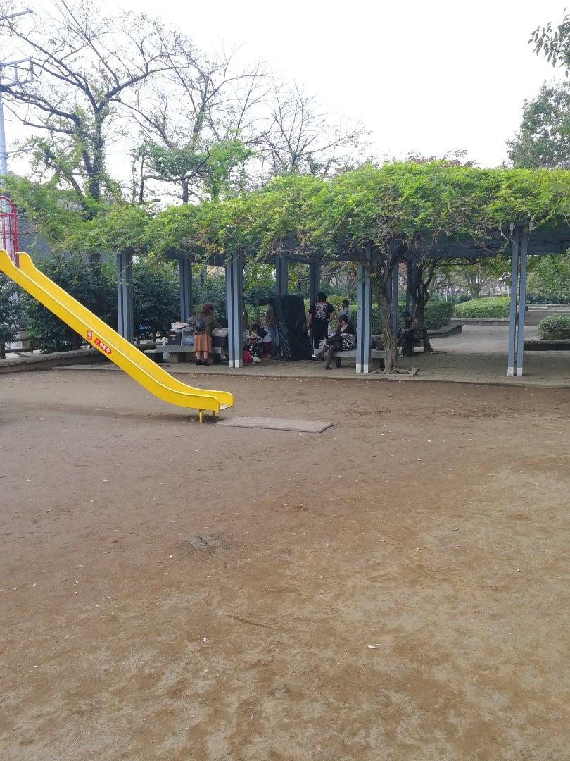 幼稚園 朝霞 花の木