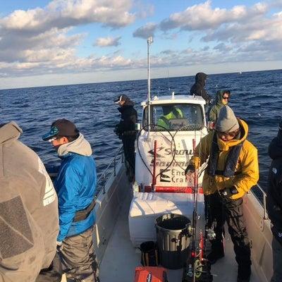 11月8日(木) ブリジギング 釣果情報!の記事に添付されている画像