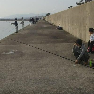 中島埠頭タマズメ釣果の記事に添付されている画像