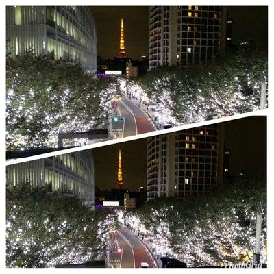 六本木ヒルズのイルミネーションの記事に添付されている画像