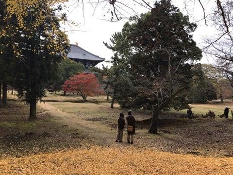 長】秋真っ盛り   奈良クラブ公式ブログ