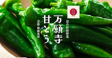 京野菜 舞鶴 万願寺甘とう