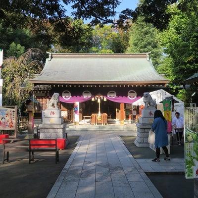 ・大田区矢口 新田神社と限定御朱印の記事に添付されている画像
