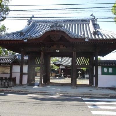 秋の乗り放題パスで広島・香川の旅~本門寺~①の記事に添付されている画像