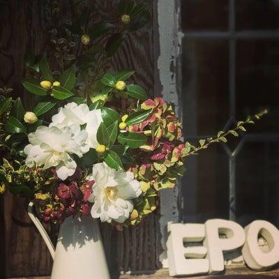 EPOカフェ『こばちょ』の花担当になりましたの記事に添付されている画像