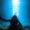 青の洞窟体験ダイビング!海はとってもきれいです♪専門店のテイクダイブで青の洞窟&パラセーリングの画像