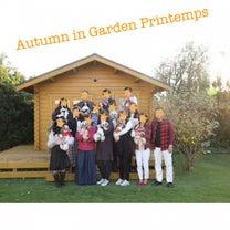 秋のわんちゃん撮影会の記事に添付されている画像
