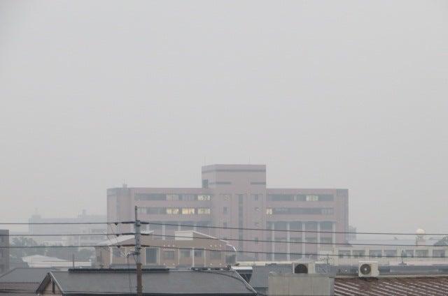 11月12日 宮崎公立大学