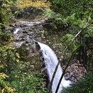 赤目四十八滝の渓谷ハイキング1の記事より