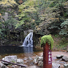 赤目四十八滝の渓谷ハイキング2の記事より