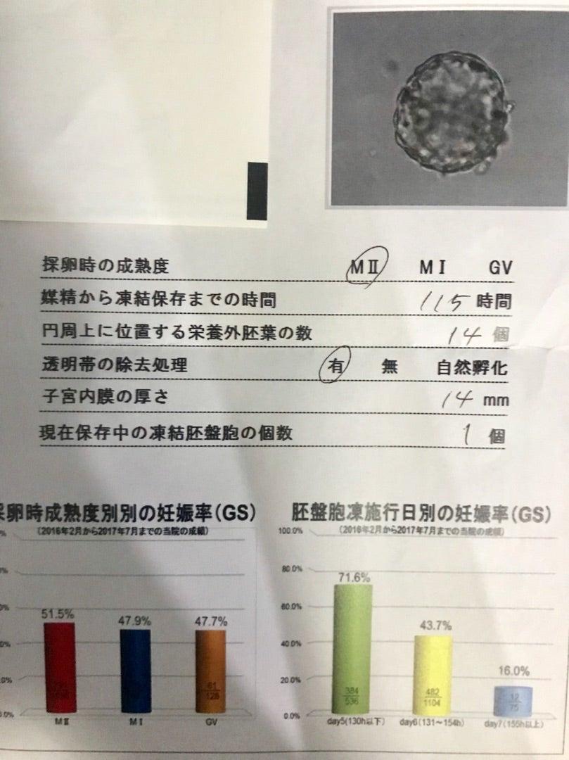 日本橋 クリニック ブログ アート ナチュラル