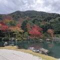 VICKY京都大丸のブログ