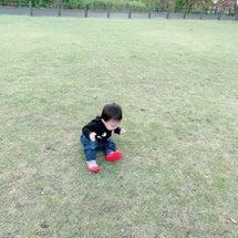 外履きの靴で歩く練習…