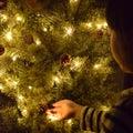 ソファを解体しました & クリスマスツリー点灯^^