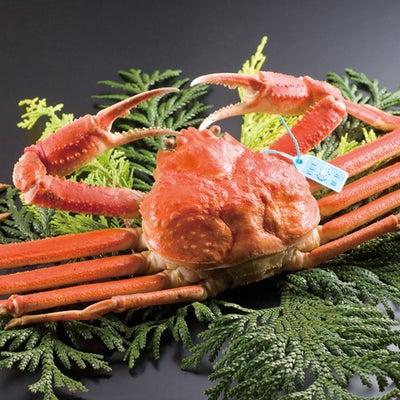 【和倉温泉 加賀屋グループ】冬の味覚といえばやっぱり「蟹」!蟹プランのご紹介☆の記事に添付されている画像