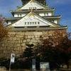大阪城ウォーキングの画像