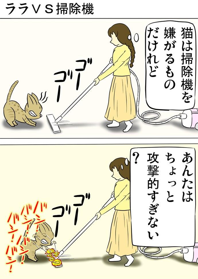 おさげの女性が持つ掃除機に威嚇して掃除機の先を両前足で叩き続けるベンガル猫