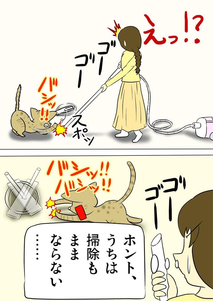 掃除機の先を右前脚で弾き飛ばしてそれを追って両前足ではじき続けるベンガル猫と先のなくなった掃除機の吸い込み口を眺めるおさげの女性