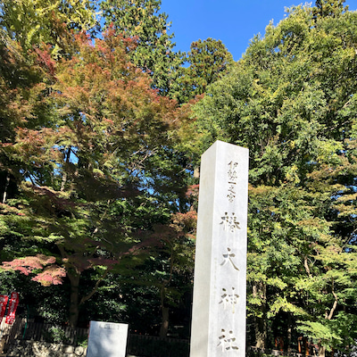 椿大神社~ みちびきの神と縁結びの神の記事に添付されている画像