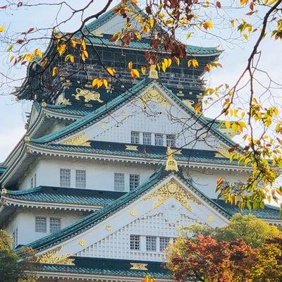 大阪城が無理なワケ⁉︎の記事に添付されている画像