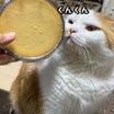 成城石井の新作チーズケーキがなめらかすぎる件