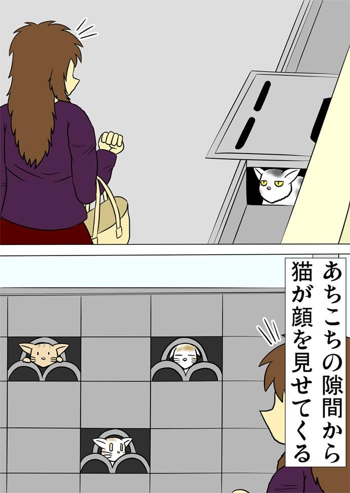 排水溝から顔をのぞかせたり塀の穴から顔を出している猫たちを眺める右腕に買い物かごを下げた女性