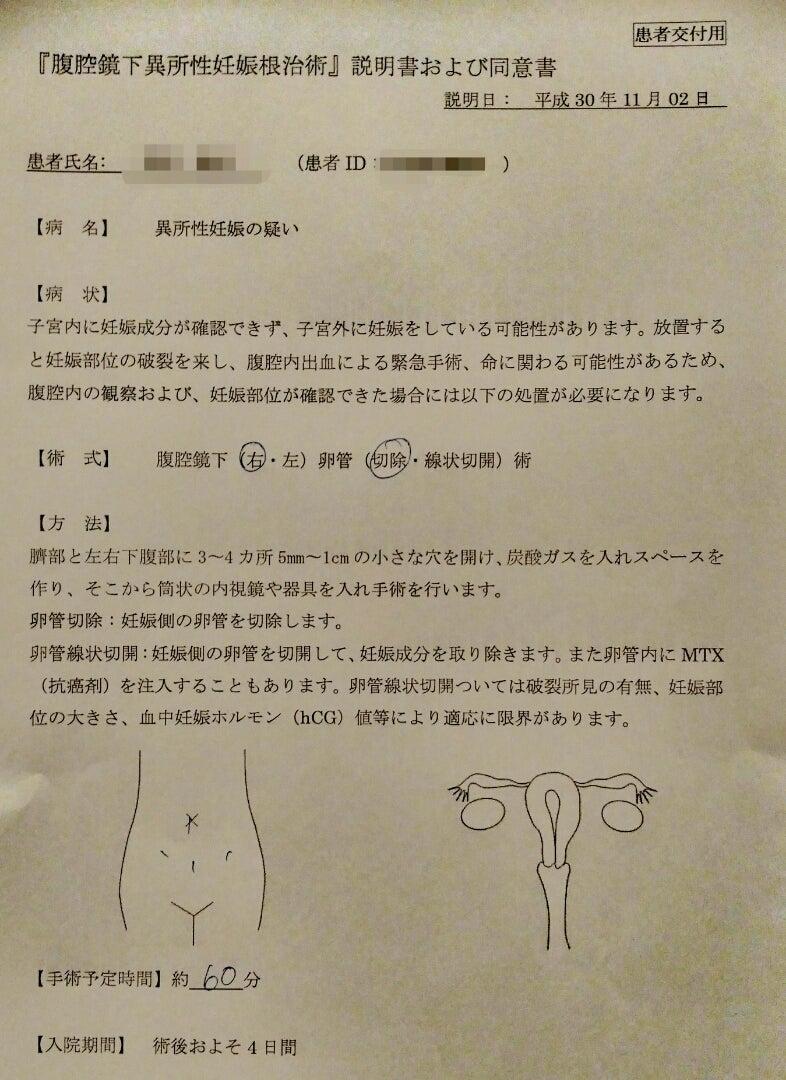 妊娠 ブログ 外 子宮