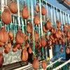 ∵ 干し柿・息杖・大会の画像
